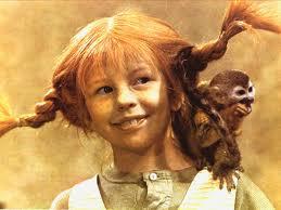 Pippi monkey